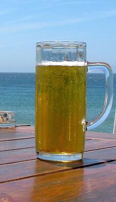 Health Benefits Of Drinking Craft Beer